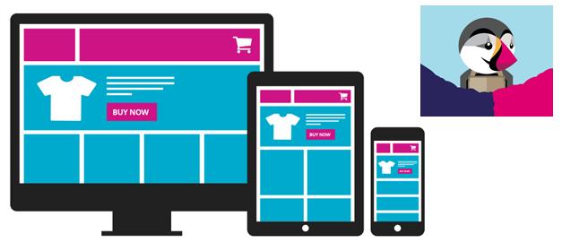 Webmaster sur Toulouse réalise vos site e-commerce de vente en ligne